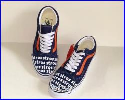 Custom Astros Vans